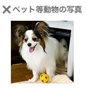 Omiai_pic_ng1.jpg