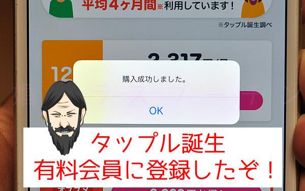 tapple_smart_18.jpg