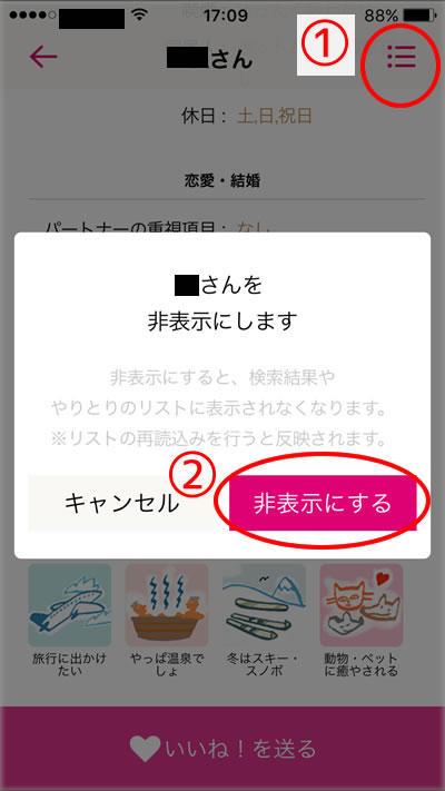 zexykoi_block1.jpg