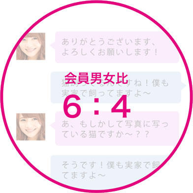 zexykoi_start3.jpg